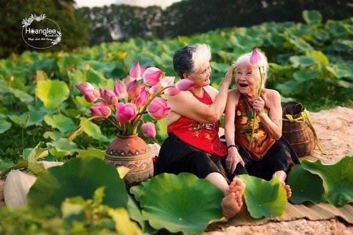 Bộ ảnh du lịch Đà Lạt của 'đôi bạn già' u80 gây sốt CĐM Ảnh 6