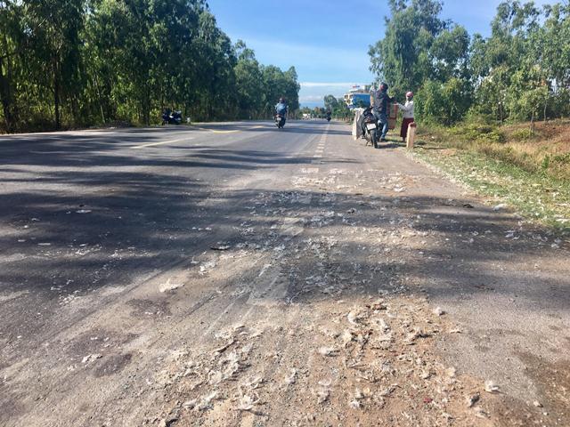 Xe tải chở vịt bị lật: Tình huống bất ngờ của lái xe Ảnh 2
