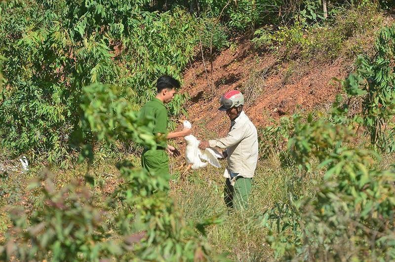 Những vụ 'hôi của' đáng xấu hổ của người Việt Ảnh 4