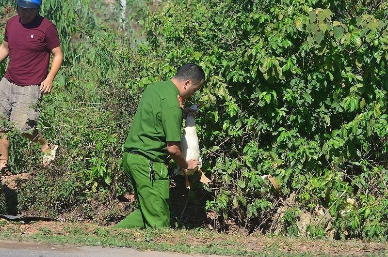Những vụ 'hôi của' đáng xấu hổ của người Việt Ảnh 5