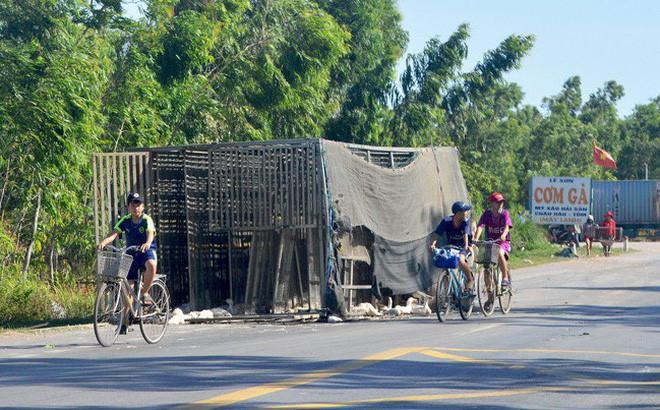 Những vụ 'hôi của' đáng xấu hổ của người Việt Ảnh 1