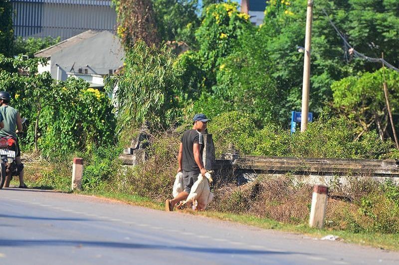 Những vụ 'hôi của' đáng xấu hổ của người Việt Ảnh 2