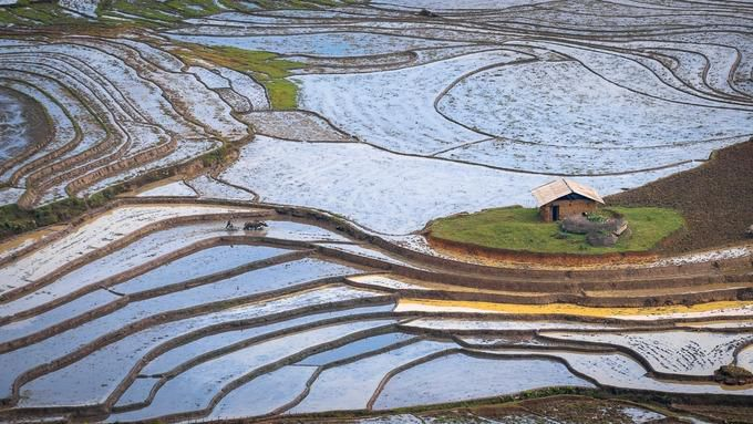 Mùa nước đổ đẹp như tranh ở Lào Cai Ảnh 2