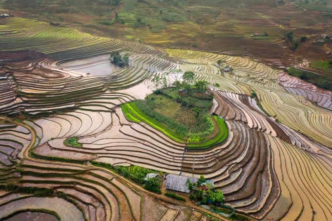 Mùa nước đổ đẹp như tranh ở Lào Cai Ảnh 3
