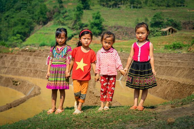 Mùa nước đổ đẹp như tranh ở Lào Cai Ảnh 7