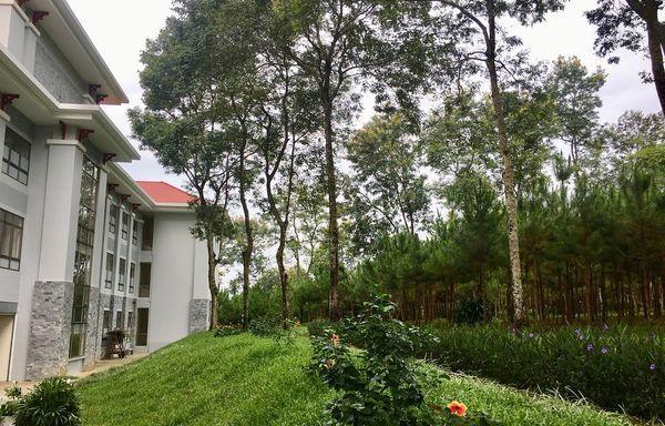 Lạc vào khuôn viên xanh mướt của Đại học Tôn Đức Thắng cơ sở Bảo Lộc, quanh năm hoa đua nở khoe sắc Ảnh 3