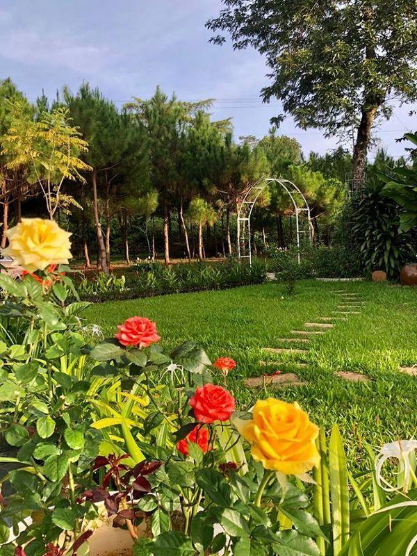 Lạc vào khuôn viên xanh mướt của Đại học Tôn Đức Thắng cơ sở Bảo Lộc, quanh năm hoa đua nở khoe sắc Ảnh 7