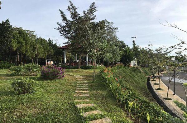Lạc vào khuôn viên xanh mướt của Đại học Tôn Đức Thắng cơ sở Bảo Lộc, quanh năm hoa đua nở khoe sắc Ảnh 10