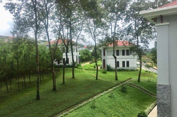 Lạc vào khuôn viên xanh mướt của Đại học Tôn Đức Thắng cơ sở Bảo Lộc, quanh năm hoa đua nở khoe sắc Ảnh 6