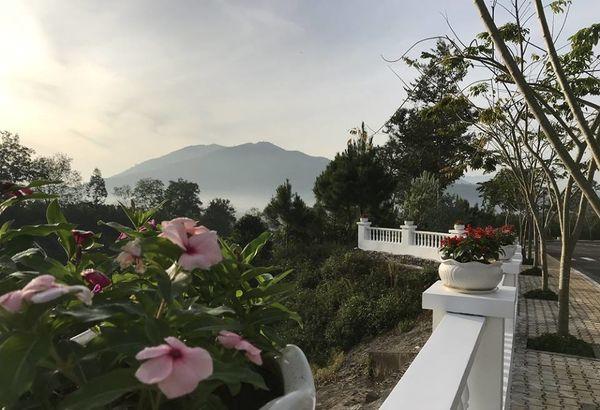 Lạc vào khuôn viên xanh mướt của Đại học Tôn Đức Thắng cơ sở Bảo Lộc, quanh năm hoa đua nở khoe sắc Ảnh 8