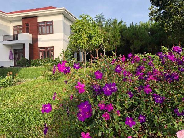 Lạc vào khuôn viên xanh mướt của Đại học Tôn Đức Thắng cơ sở Bảo Lộc, quanh năm hoa đua nở khoe sắc Ảnh 9