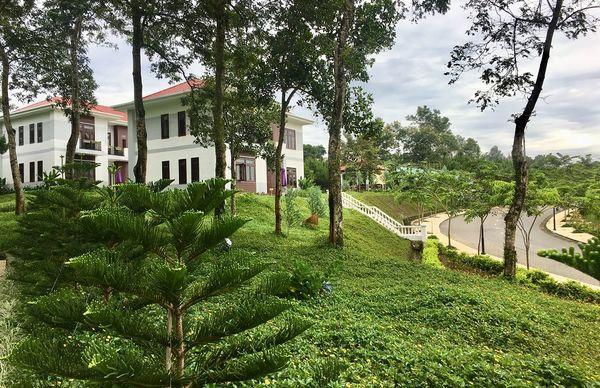 Lạc vào khuôn viên xanh mướt của Đại học Tôn Đức Thắng cơ sở Bảo Lộc, quanh năm hoa đua nở khoe sắc Ảnh 4