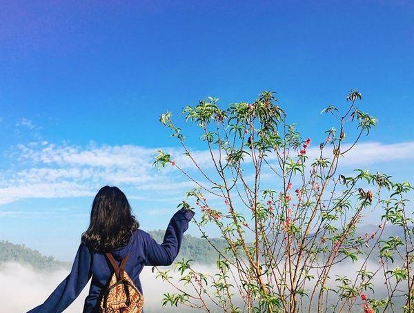 Lạc vào khuôn viên xanh mướt của Đại học Tôn Đức Thắng cơ sở Bảo Lộc, quanh năm hoa đua nở khoe sắc Ảnh 11