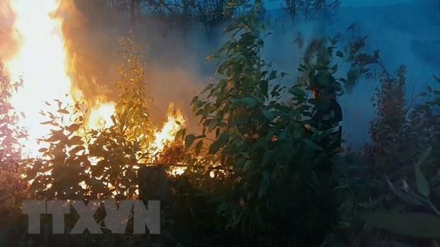Phú Yên: Cháy rừng quy mô lớn, chưa khống chế được ngọn lửa