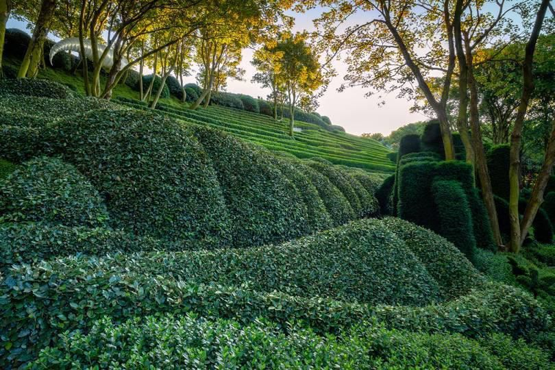 Khu vườn kỳ dị hút khách nhờ những viên đá mặt người khổng lồ Ảnh 3