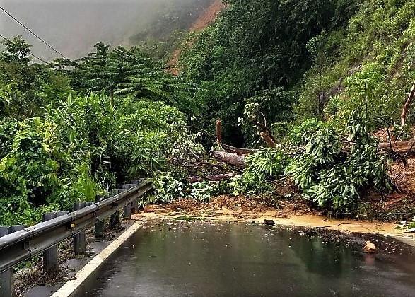 Lâm Đồng: Sạt lở nghiêm trọng, đèo Con Ó tê liệt 6 ngày vẫn chưa thông Ảnh 3