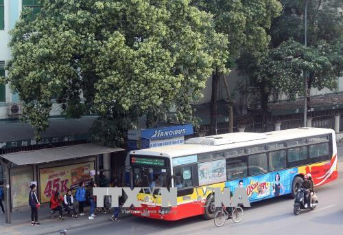 Từ 1/9, Hà Nội miễn phí đi xe buýt cho người thuộc diện ưu tiên Ảnh 1