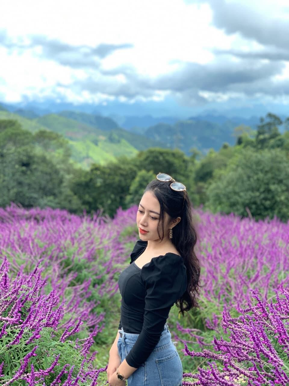 Đồi hoa tím biếc tựa trời Âu thu hút giới trẻ Việt check-in Ảnh 3