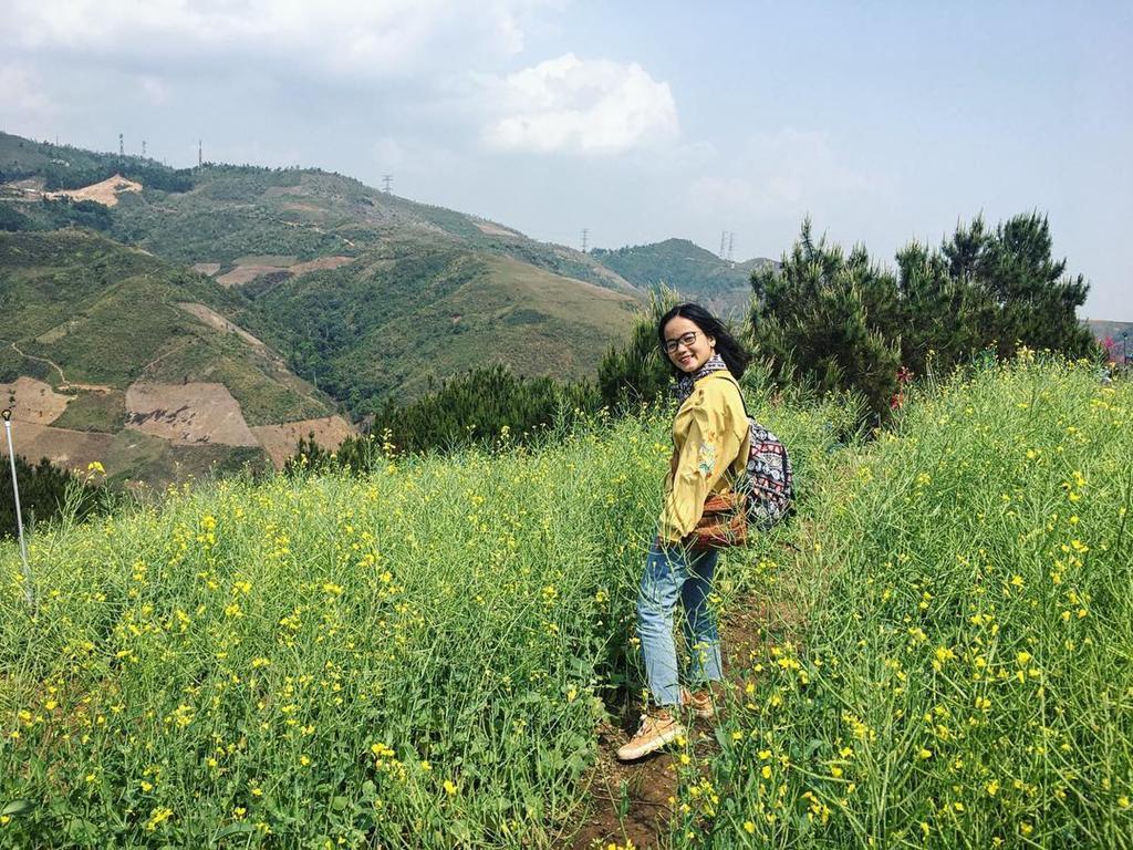 Đồi hoa tím biếc tựa trời Âu thu hút giới trẻ Việt check-in Ảnh 10