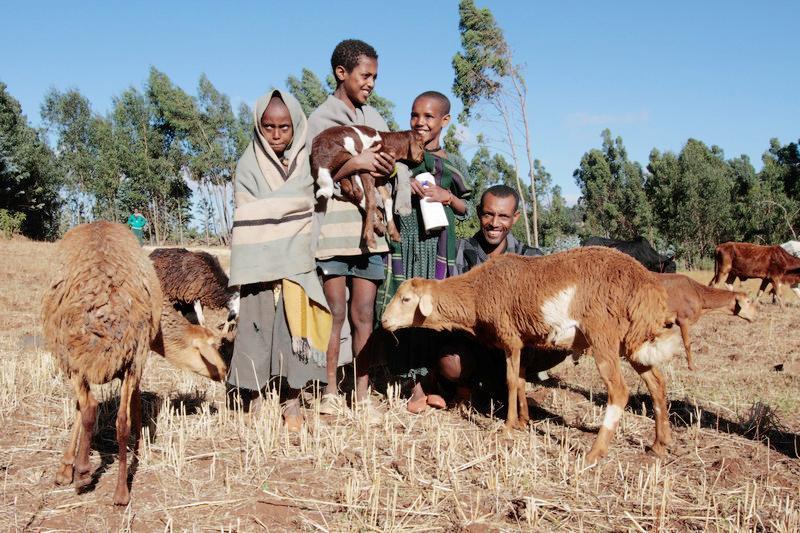 UNICEF báo động những nguy cơ mới đáng lo ngại với trẻ em toàn cầu Ảnh 4