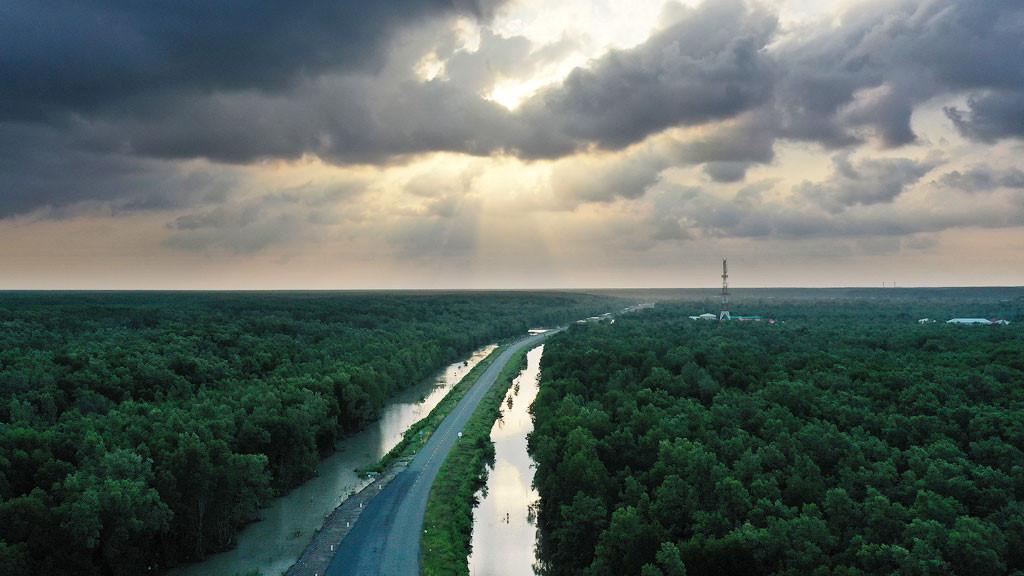 Đất mũi Cà Mau xanh mướt từ từ flycam: Nơi đất biết nở, nơi rừng biết đi Ảnh 7