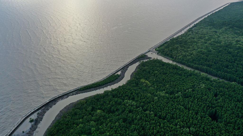 Đất mũi Cà Mau xanh mướt từ từ flycam: Nơi đất biết nở, nơi rừng biết đi Ảnh 15