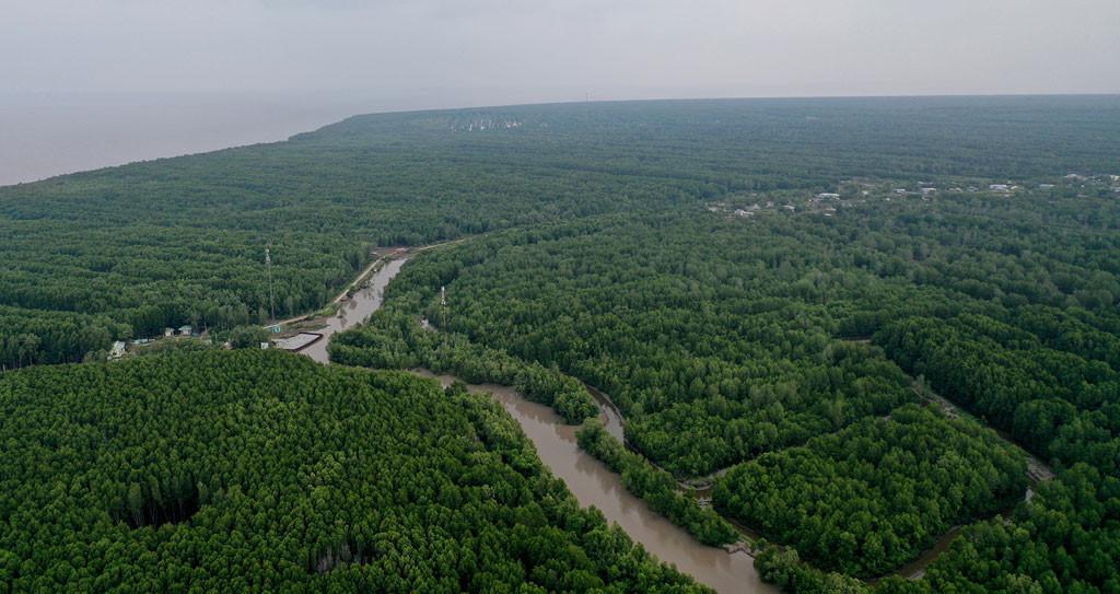 Đất mũi Cà Mau xanh mướt từ từ flycam: Nơi đất biết nở, nơi rừng biết đi Ảnh 5