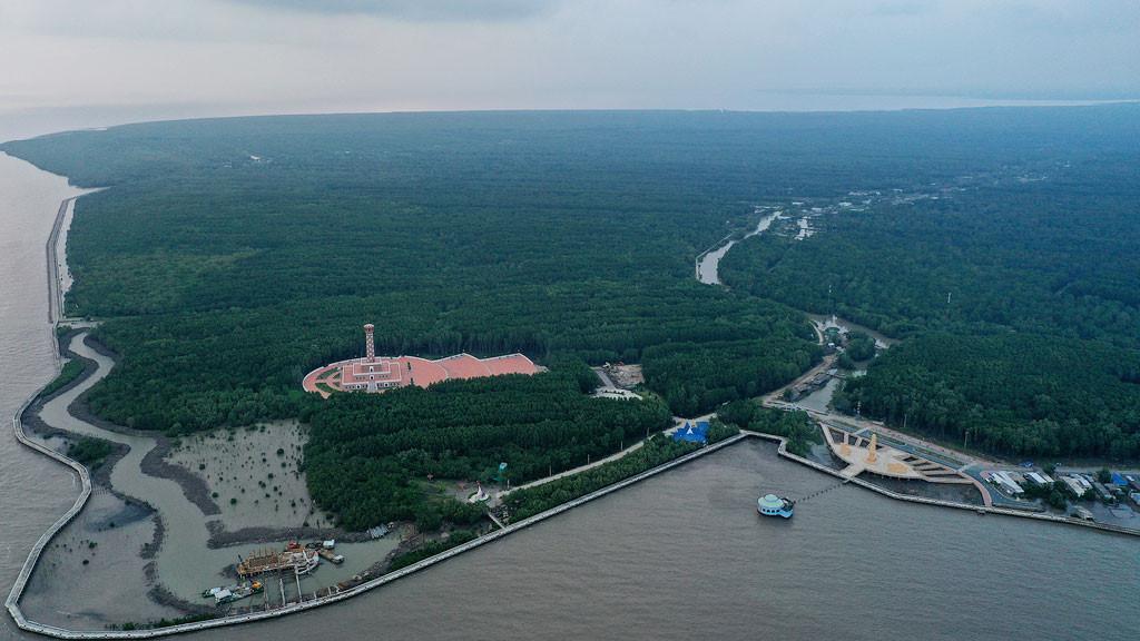Đất mũi Cà Mau xanh mướt từ từ flycam: Nơi đất biết nở, nơi rừng biết đi Ảnh 1