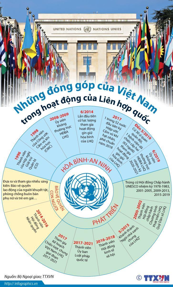 Những đóng góp của Việt Nam trong hoạt động của Liên hợp quốc Ảnh 1