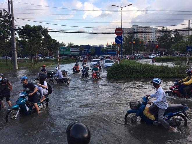 Triều cường lên cao, người Sài Gòn lội nước về nhà Ảnh 1