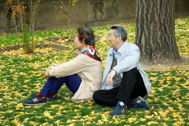 Đi du lịch khi tuổi già gõ cửa Ảnh 4