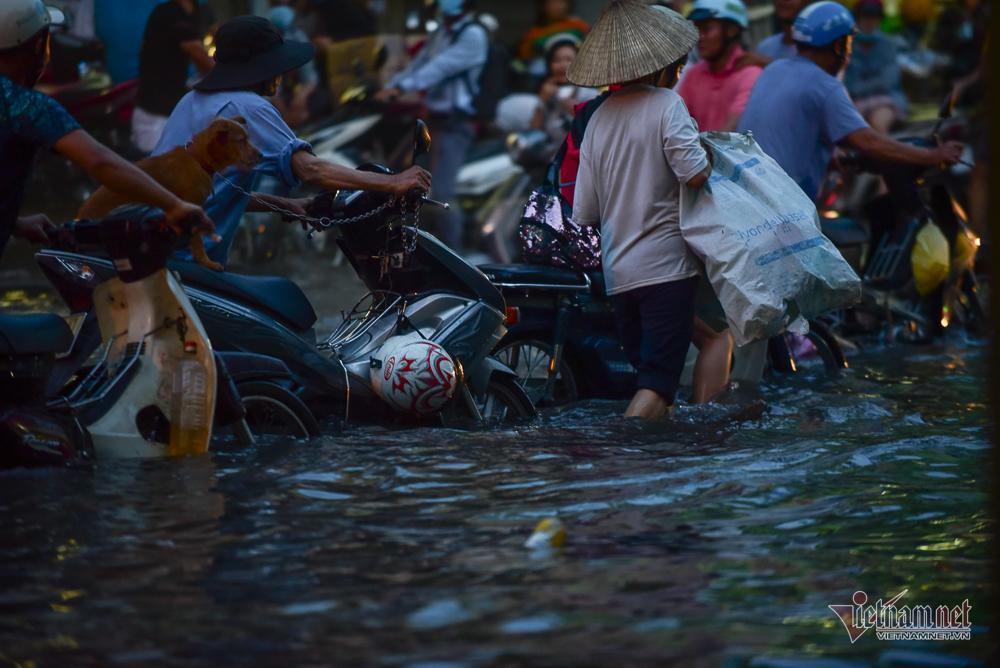 Mẹ bồng con mò mẫm lội đường Sài Gòn ngày triều cường kỷ lục Ảnh 10