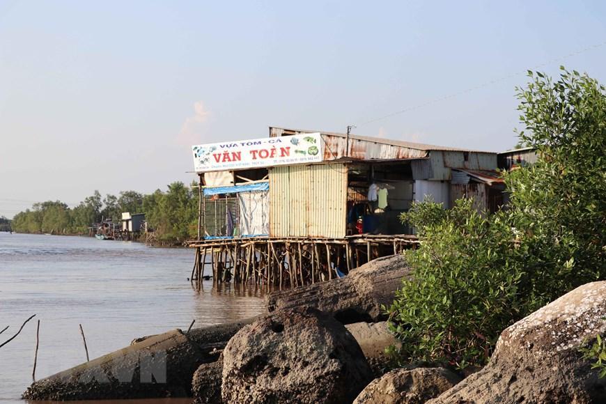 Những hình ảnh cho thấy nguy cơ sạt lở 'bủa vây' bán đảo Cà Mau Ảnh 5