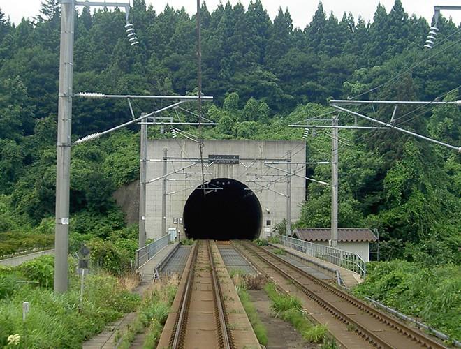 Chiêm ngưỡng những đường hầm đặc biệt nhất thế giới khiến nhiều người ngỡ ngàng Ảnh 20