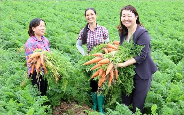 30 năm nữa Việt Nam thiếu hơn 4 triệu phụ nữ Ảnh 1