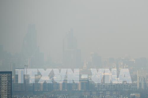400.000 ca tử vong sớm do ô nhiễm không khí tại châu Âu Ảnh 1