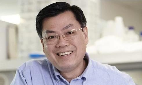 Giáo sư gốc Việt đầu tiên được bầu làm Viện sĩ Viện Hàn lâm Y học Australia Ảnh 1