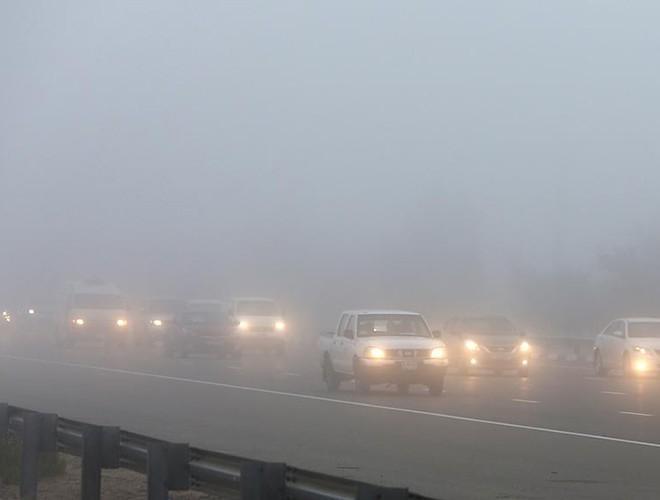 Đèn phá sương và những điều cần lưu ý Ảnh 6