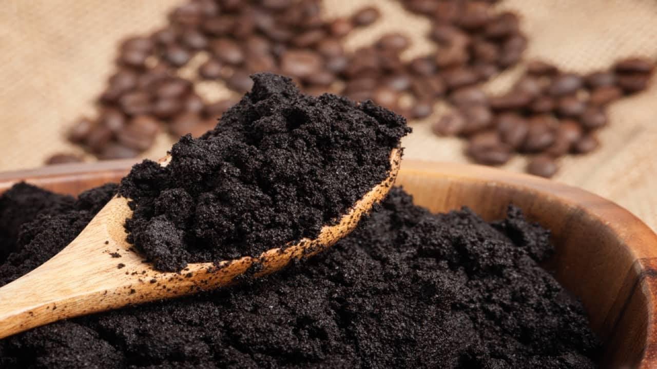 Bã cà phê bỏ đi không ngờ lại có tác dụng ngừa sốt xuất huyết Ảnh 1