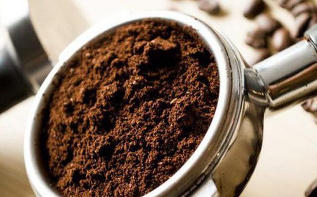 Bã cà phê bỏ đi không ngờ lại có tác dụng ngừa sốt xuất huyết Ảnh 8