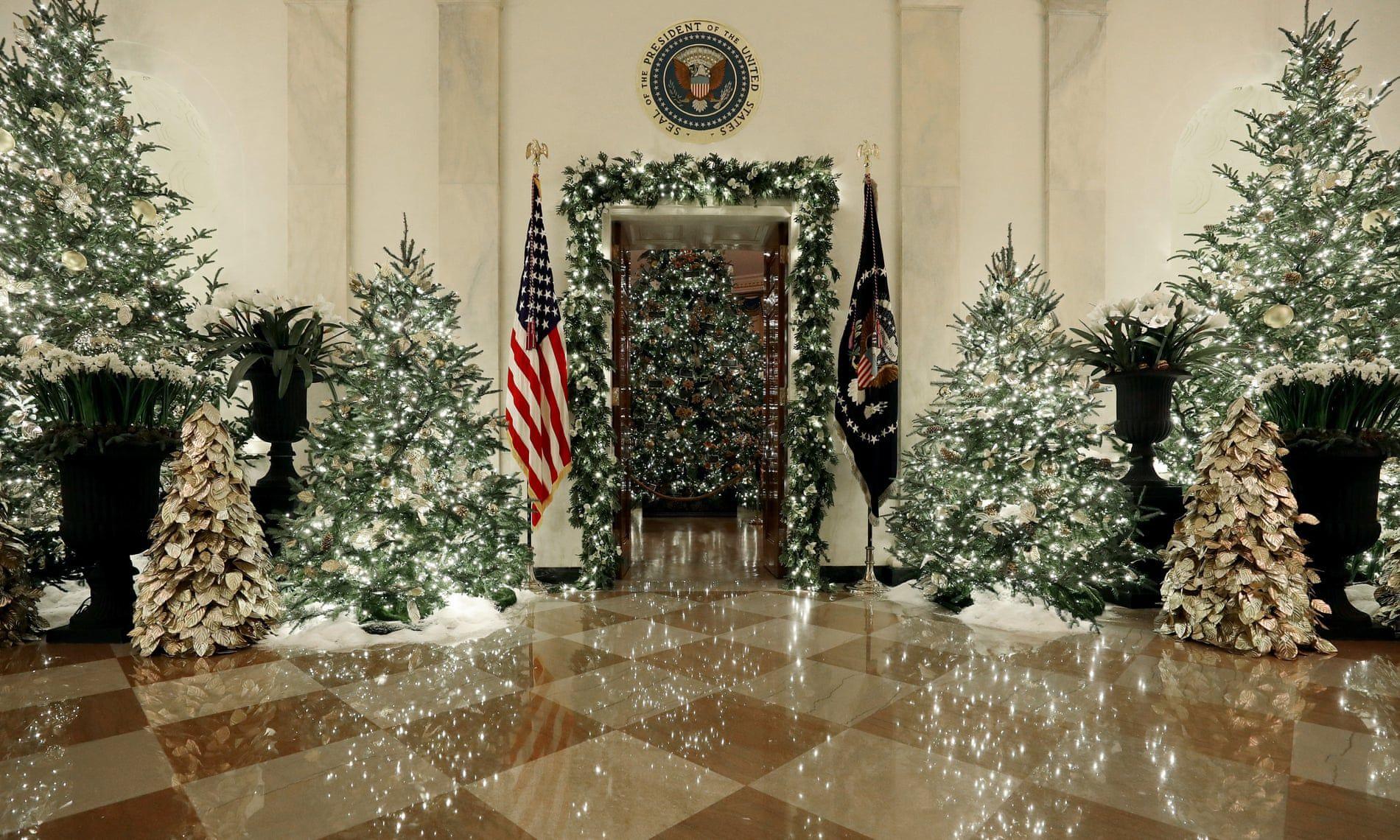 Ngắm không khí Giáng sinh 2019 - 'Tinh thần của nước Mỹ' tại Nhà Trắng Ảnh 1