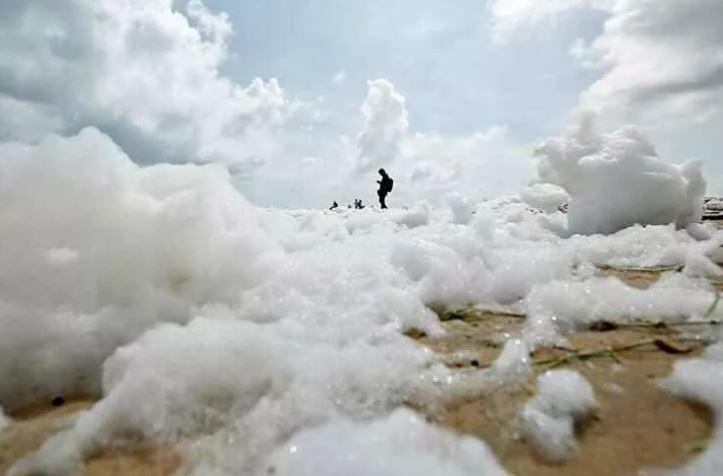 Bọt trắng độc hại phủ kín bãi biến Ấn Độ Ảnh 3