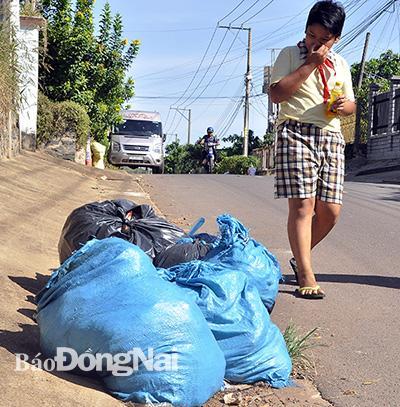 Khổ vì rác không được thu gom Ảnh 1