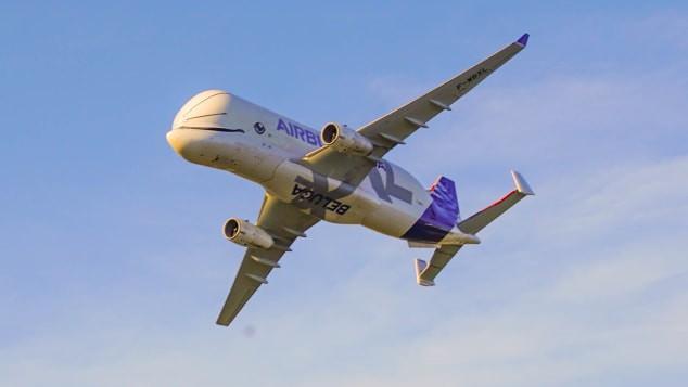 Chiếc 'cá voi bay' của Airbus chính thức đi vào hoạt động sau thời gian dài thử nghiệm Ảnh 3