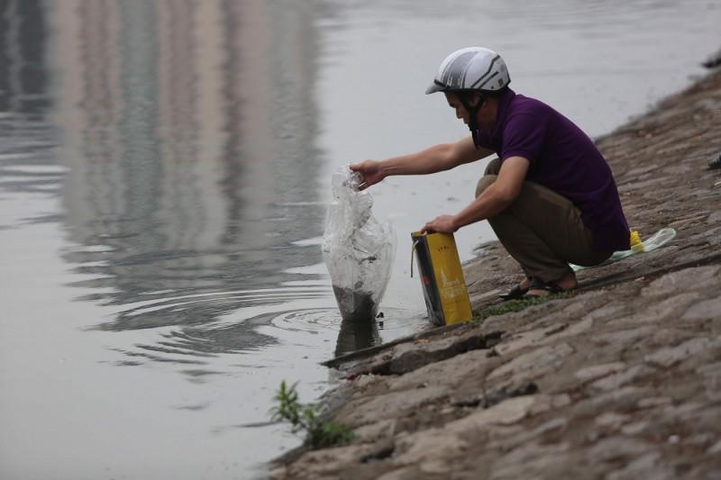 Cá chép phơi trắng bụng trên hồ Hoàng Cầu Ảnh 3