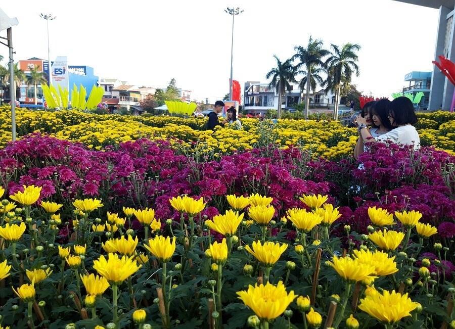 'Đại lão mai' giá 250 triệu ở chợ hoa Quảng Trị khiến nhiều người ngẩn ngơ Ảnh 13