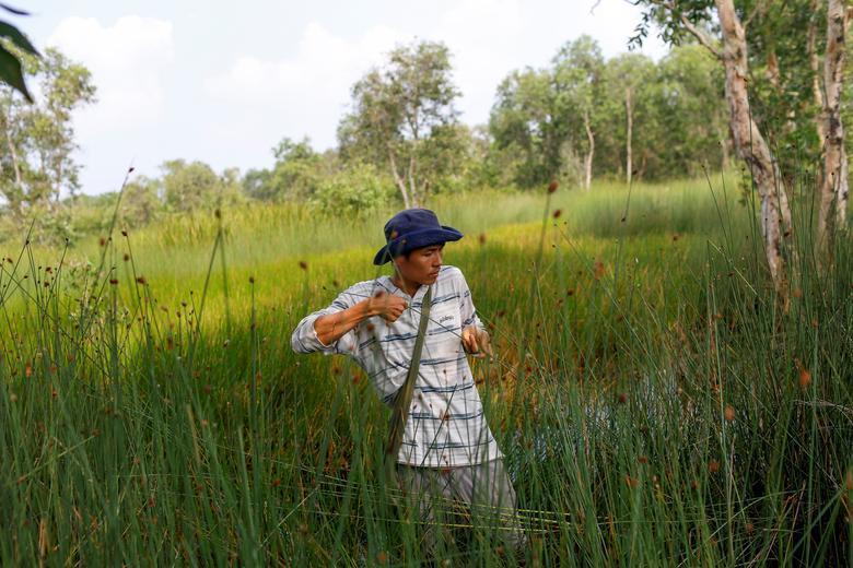 Ống hút làm từ cỏ của chàng trai Việt được báo Anh khen ngợi Ảnh 5