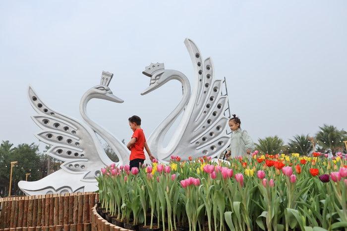 Ngỡ ngàng vẻ đẹp của thung lũng đầy sắc hoa xuân tại khu đô thị ở Hà Nội Ảnh 5