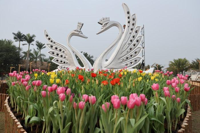 Ngỡ ngàng vẻ đẹp của thung lũng đầy sắc hoa xuân tại khu đô thị ở Hà Nội Ảnh 4