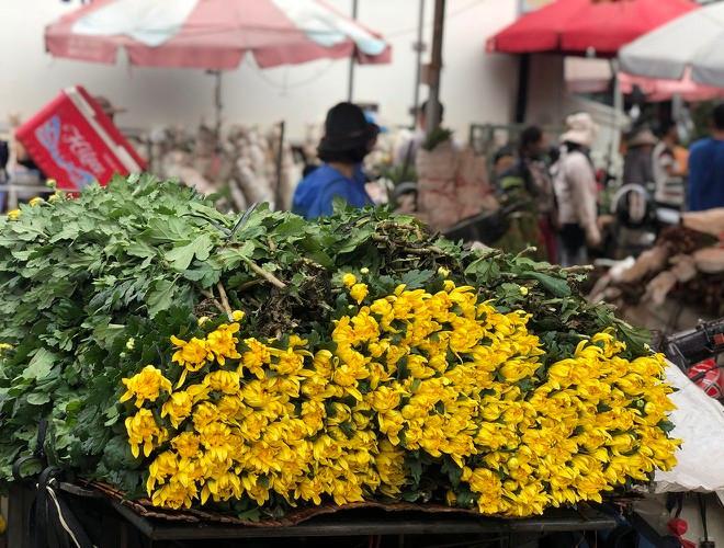 Nhộn nhịp chợ hoa Quảng An ngày cuối năm trong mưa lạnh Ảnh 9
